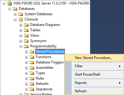 New Stored Procedure