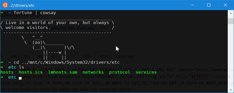JimFrenette com | WSL ubuntu zsh nvm etc